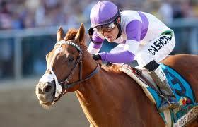 This year's Kentucky Derby winner, I'll Have Another