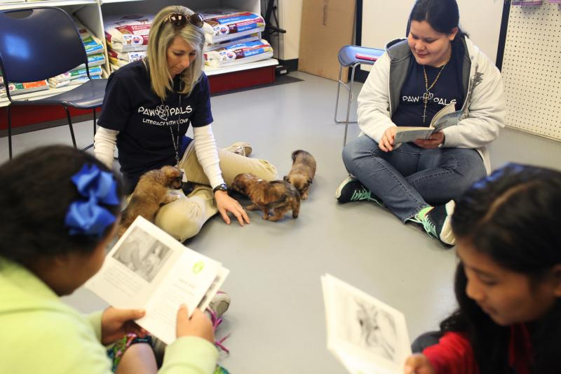 Teacher Cathy Roemer-Garrison and her students play with and read to puppies at the Warren County Humane Society on Wednesday, April 16, 2014.