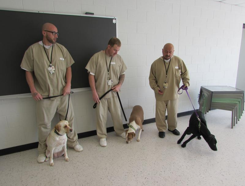 Three of the trainers in the Death Row Dogs program are, left to right, Allen Hearld with Snookie, Timothy Mackey with Ace, and Timothy Cruz with Rain.