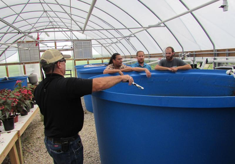 At Thomas Aquafarms in Daviess County, Kentucky State University Aquaculture Extension Specialist Forrest Wynne, left, checks the dissolved oxygen in the tilapia tank with, l-r, Noel Novelo,  Andrew Ray and Eric Thomas.