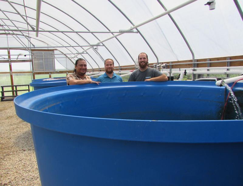 At Thomas Aquafarms are, left to right, Kentucky State University Aquaculture Genetics Resarcher Noel Novelo, Assistant Professor in the KSU Division of Aquaculture Andrew Ray, and Eric Thomas, who created Thomas Aquafarms with his dad, Rick Thomas.