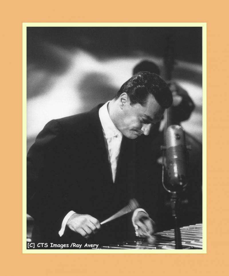 Terry Gibbs playing the vibraphones in concert.