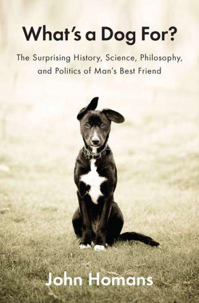 Quotes About Dog Friendship Amazing Quotes About Best Friends Dogs Best Pet Quotes On Cat Puppy.