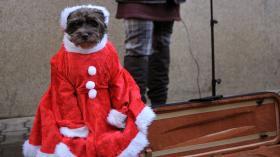 Someone took Santa's violin.