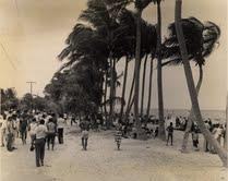 During segregation, Virginia Key Beach Park was designated as the area's 'colored-only' beach.