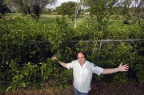 NOT MUCH TO SEE: Michael Rosenberg lives on the Calusa Country Club Golfcourse at Southwest 130th Avenue and North Calusa Drive but can't even see the golf course since the owners of the property fenced it off.