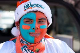 Divided opinions may make Dolphins' stadium renovations a hard sell.
