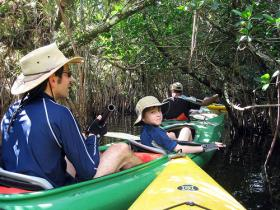 Wildlife viewing is popular with Florida residents and tourists, making Everglades restoration and environmental protection a matter of economic concern.