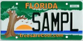 "Florida has more than 100 active specialty license plates, including the ""Trees Are Cool"" plate."