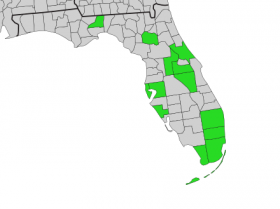 Florida provides no statewide alternative to same-sex marriage, and most counties (in gray above) do not formally recognize domestic partnerships.