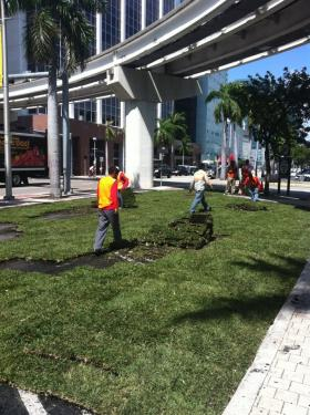 Anthony Garcia is no stranger to carving out public spaces in Miami. He's been behind a couple projects that have built temporary parks over parking spaces and lots like this one next to Bayfront Park in early 2012.