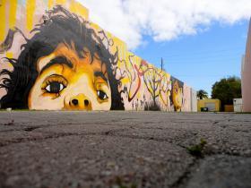 Eduardo Mendieta's Mural Outside Gallery 2014
