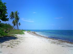 Virginia Key Beach Park