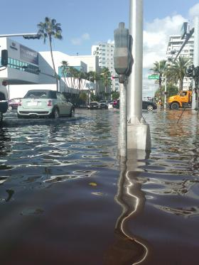 The Ghost of Sea-Level Rise Future?  Last month's King Tide had pedestrians wading through knee-deep water in Miami Beach.