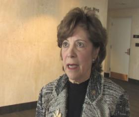 Former Sen. Nan Rich is lagging behind fellow Democrat and former Gov. Charlie Crist in the polls.