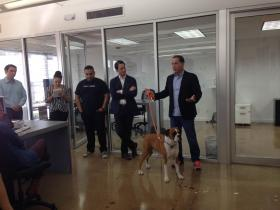 Levine addresses Rokk3r Labs, accompanied by his dog, Earl.