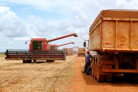 Soybean harvest in Mato Grosso, Brazil. The South American giant is now the world's largest soybean producer.