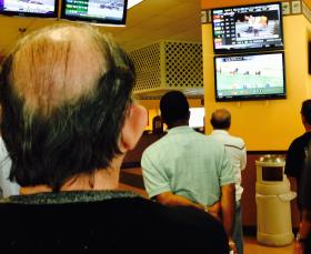 Gamblers watching the live stream races at the Kennel Club