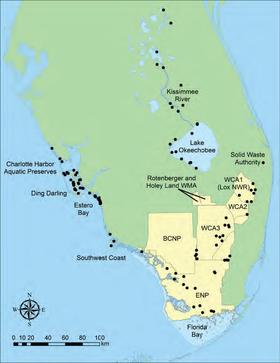 Locations of wading bird colonies with 50 or more nests in South Florida, 2014. Source: South Florida Water Management District