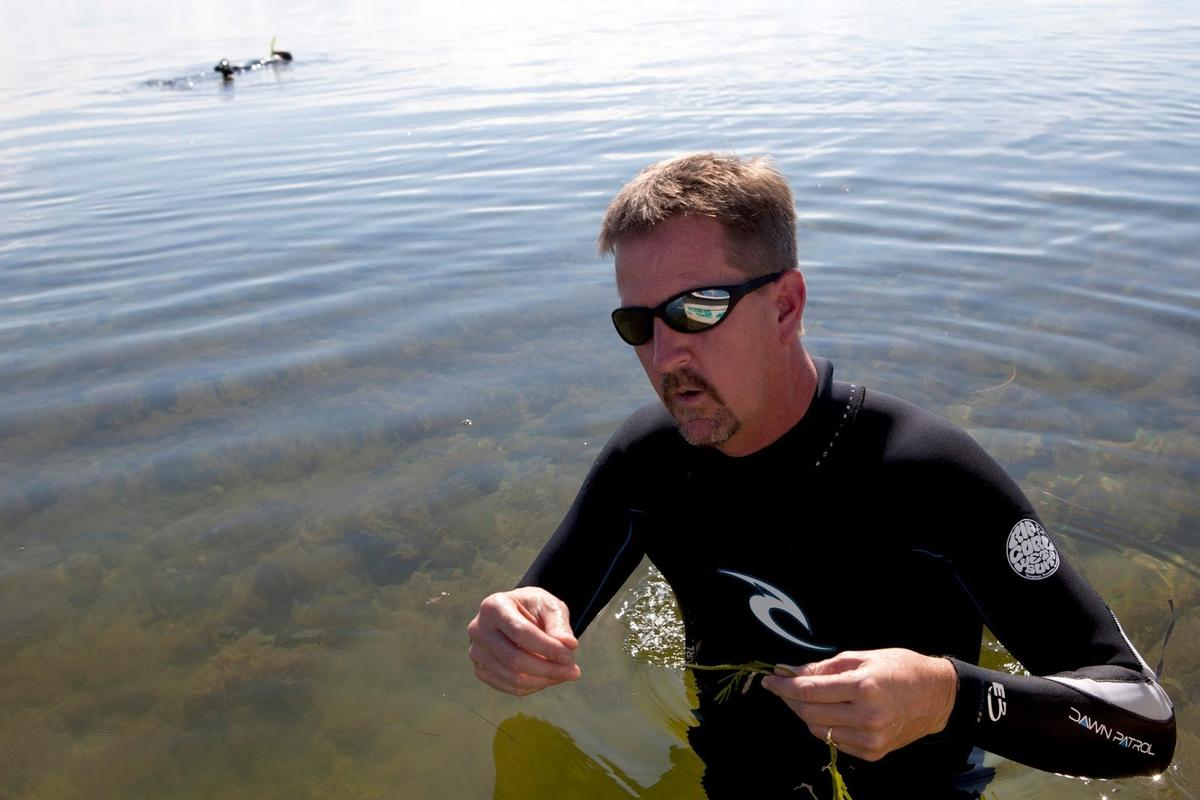 TomFrazer2010GulfCoastbyUFTylerJones In: Florida's Dirty Water Tops List of Woes For New Chief Science Officer | Our Santa Fe River, Inc. (OSFR) | Protecting the Santa Fe River