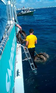 Crew removes tires from the water.