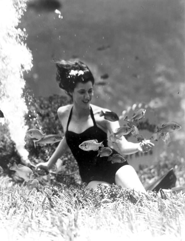Performer at Weeki Wachee springs feeds the fish.