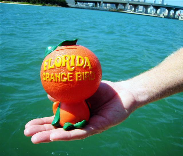 "Campbell McGrath keeps the Florida ""orange bird"" in his office."