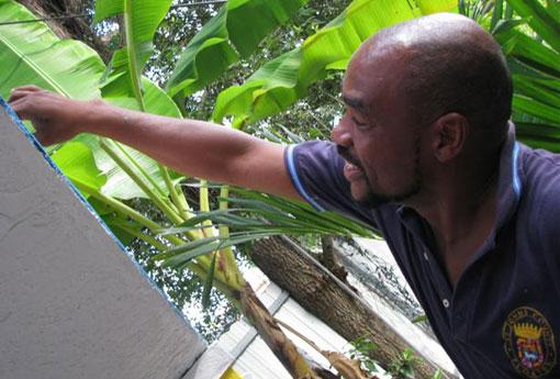 Miami muralist Serge Toussaint paints a mural in a North Miami backyard.