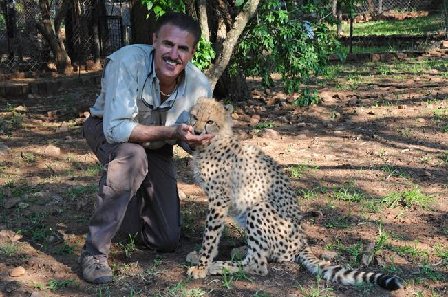 Ron Magill from Zoo Miami with one of the cheetahs