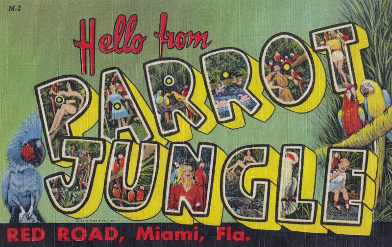 Old Parrot Jungle postcard, circa 1936