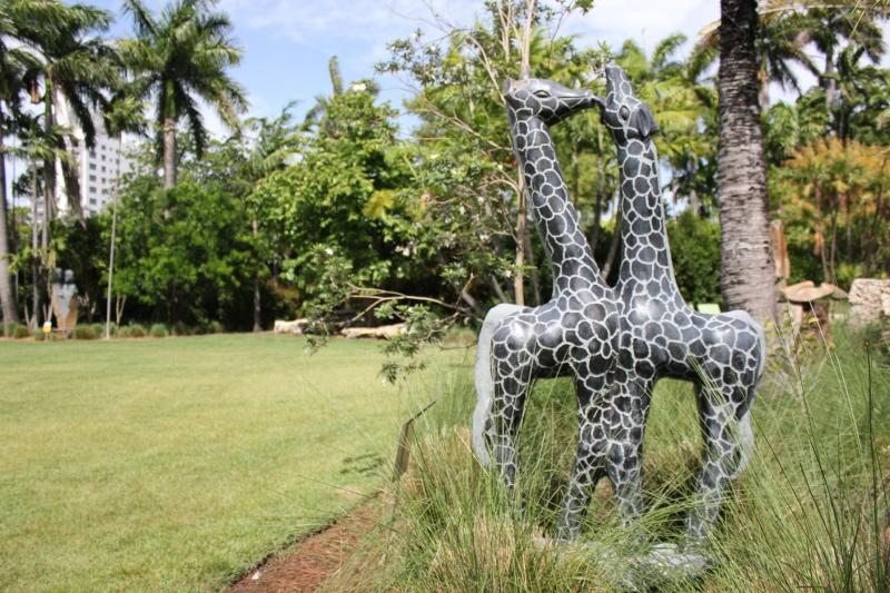 """Giraffs Playing"" by Fungayi Mwarowa"