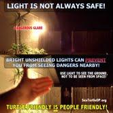 A poster illustrating the benefits of turtle-friendly lighting