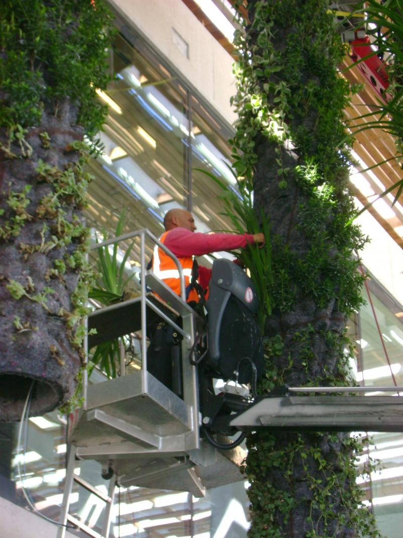 Large, self-watering, vertical gardens are being hung from the roof outside the building.