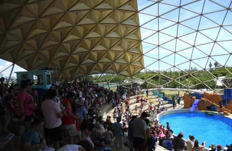 A Fuller-inspired dome at the Miami Seaquarium.