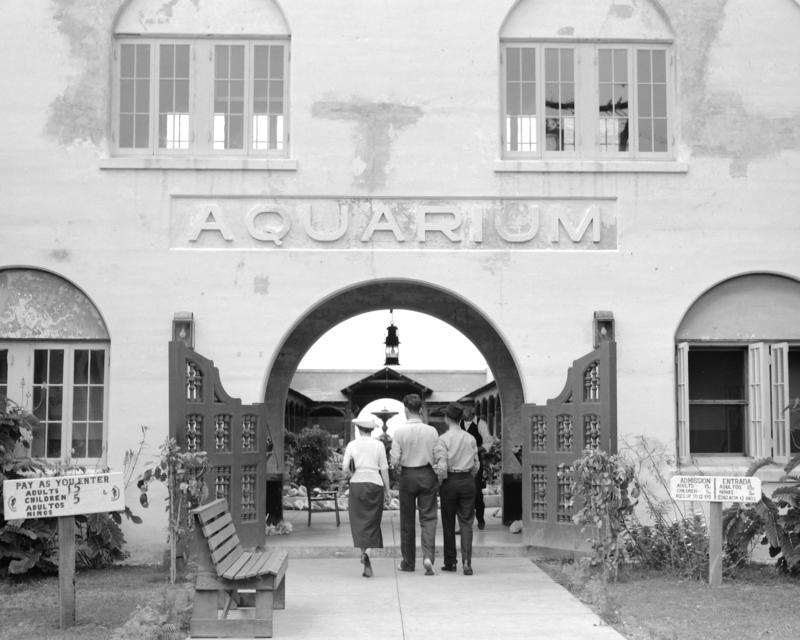 The Key West Aquarium was built under a New Deal program to help lure tourists to Key West.