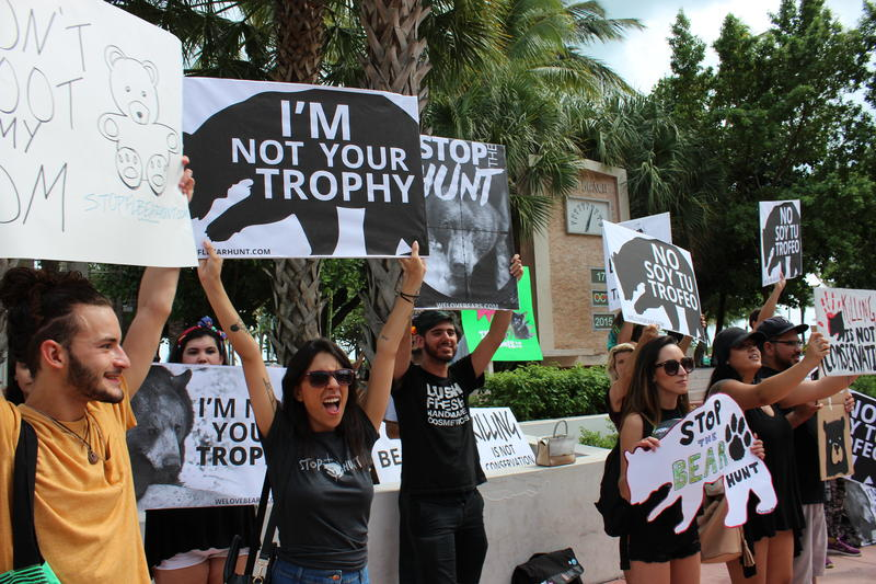 Protesters say the bear hunt may orphan many bear cubs.