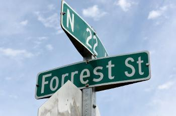 Hollywood Comissioners will have a final say about the renaming Forrest Street in a meeting scheduled for July.