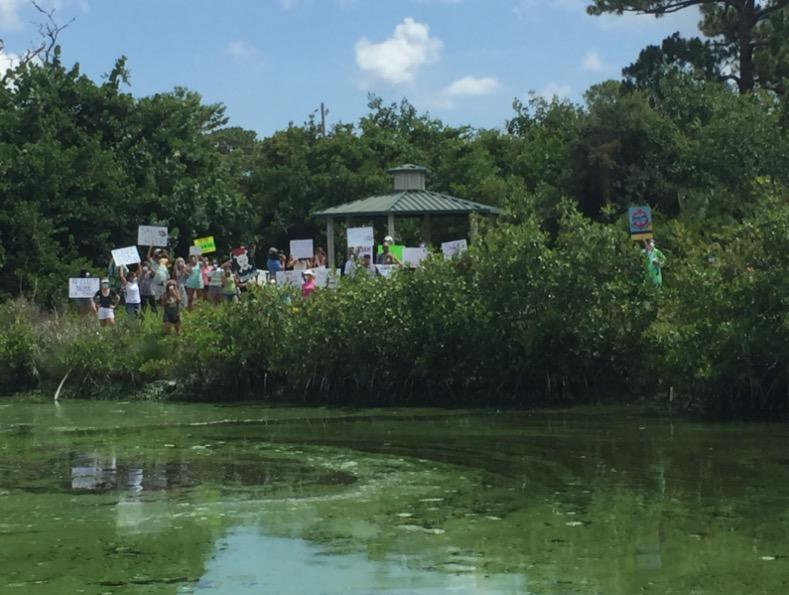 Protestors gathered Friday in Stuart near the private land visited by Senator Marco Rubio during his tour viewing areas hit by the algae.