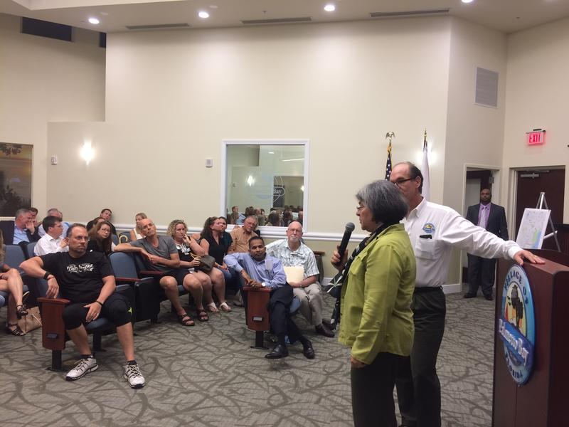 Eighth District County Commissioner Daniella Levine Cava addresses Palmetto Bay residents at a transit summit meeting on Tuesday night. Levine Cava also lives in Palmetto Bay.