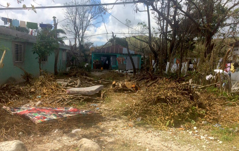 The front yard of the rare metal-roofed house that survived the hurricane in Camp Perrin, Haiti.
