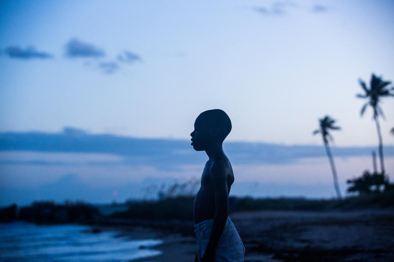 The film Moonlight is a triptych, following the life of a boy growing up in Miami's Liberty City.