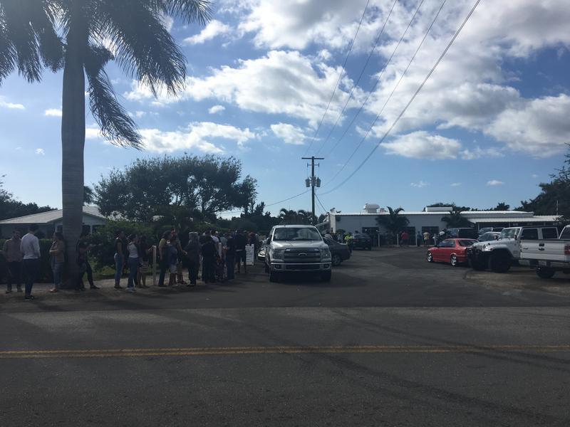 The line for cinnamon rolls went around into the sidewalk surrounding Knaus Berry Farm.