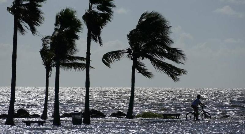 A biker rides along a flooded sidewalk last month at Matheson Hammock Park during a king tide that submerged the beach.