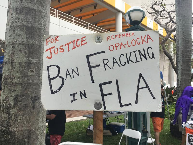 Signs made by demonstrators tackled issues going on in their own backyards - in this case fracking.
