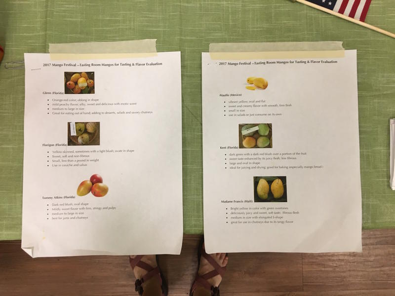 The mango varietals available in the taste testing room.