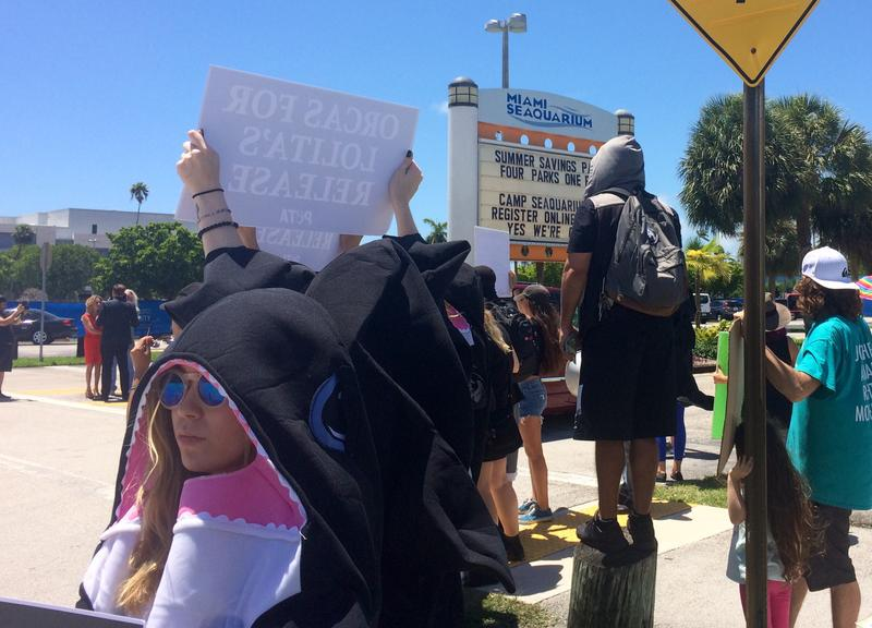 Demonstrators urged Seaquarium visitors to turn around.