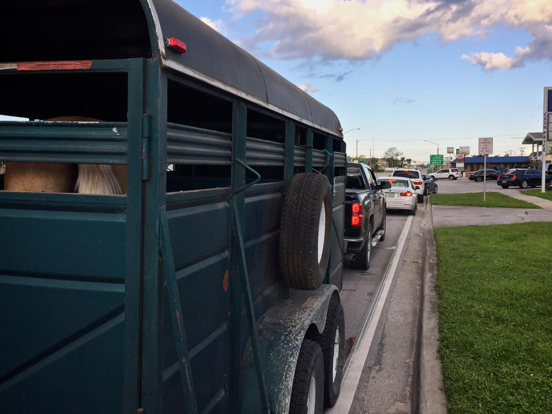 South Florida evacuees returning home after Hurricane Irma wait in line for gas at the Marathon station in Clewiston, Fla. on Sept. 12, 2017.