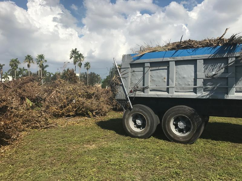 300 million cubic yards of debris are expected to hauled away in Miami-Dade county alone after Hurricane Irma.