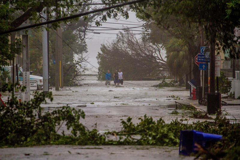 In the immediate aftermath of Hurricane Irma, people who stayed in Key West were on our own — as public officials had warned we would be.