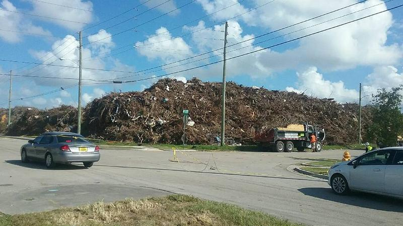 A debris pile near Northwest 79th Street has angered some Miami-Dade residents who say the county and its contractors are unfairly dumping downed leaves and foliage.